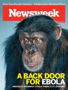 newsweek-bushmeat-337x450