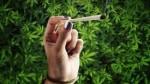 legalizing-weed