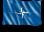 steag-nato