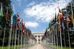1280px-united_nations_flags_-_cropped-400x266