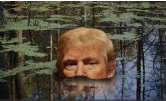 trump-draining-swamp
