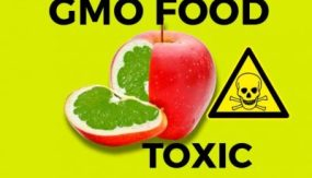 Genetically Modified Seeds: Conceived as a Weapon