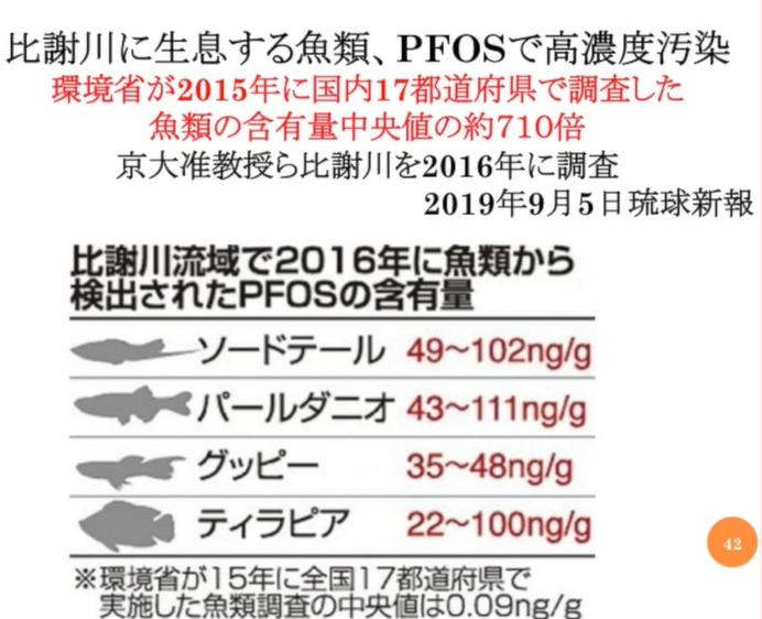 Okinawa's fish (2).png